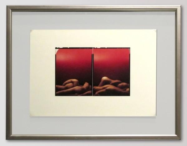 Pavel Mára - Corpusy / diptich červený, kontakt cibachrome 1/7, 1989-2003