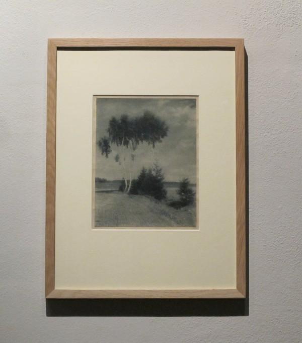 Jan Lauschmann: Břízy, 1923, bromolej