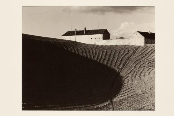 Eugen Wiškovský: Stín, 1940, pozdější zvětšenina 1992