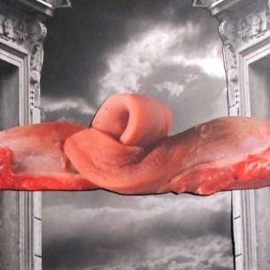 Jan Švankmajer (* 4. září 1934 Praha) je český filmový režisér, animátor a výtvarník; čelný představitel pozdního českého surrealismu. Vystudoval na pražské VŠUP a loutkové katedře AMU. Na pole filmu vstoupil v 60. letech, v době české nové vlny, svůj první film Poslední trik pana Schwarcewalldea a pana Edgara vytvořil v roce 1964. Poté se zaměřoval na krátké filmy, kde kombinoval prvky z loutkařství, animaci a prvky hraného filmu. Mezinárodní pozornost získal v roce 1983 přehlídkou svých filmů z 60. let na na mezinárodním filmovém festivalu FIFA. V roce 1988 natočil svůj první dlouhometrážní film Něco z Alenky, který získal světový úspěch. Poté natočil několik dlouhých filmů, nejnovější Přežít svůj život v roce 2010. Jako výtvarník a animátor se podílel také na filmech dalších tvůrců a tvoří i výtvarná díla mimo film. Často spolupracoval se svou ženou Evou Švankmajerovou.