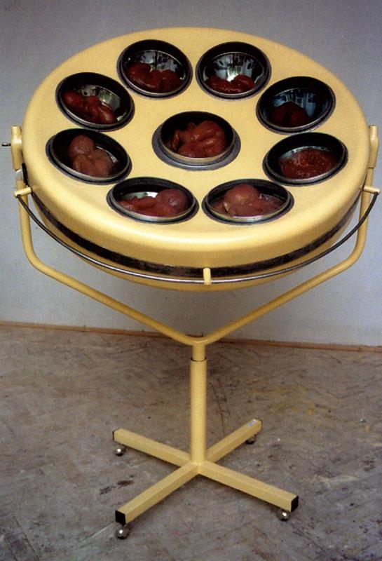 Paulína Skavová: lampa z cyklu Archa úmluvy, objekt, 2009