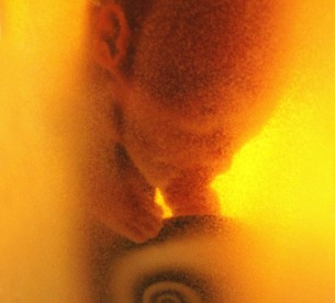 Zamyšlení nad našim příchodem na tento svět v dílech mistrů současných, minulých i budoucích. Druhá tématická výstava v galerii Artinbox. 11.5. - 5.6.2011