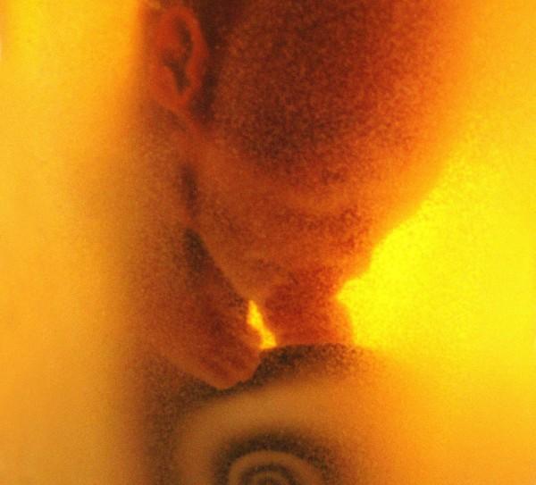 Daniel Pešta: Sloup č.2 (detail), 1998/08