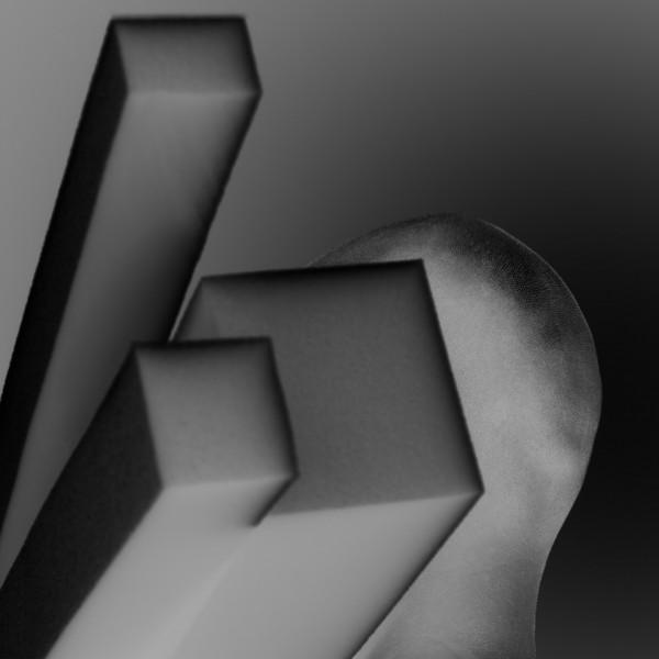 Pavel Mára: Negativní hlava II, černobílá fotografie, archivní pigmentový tisk na bavlněném papíru Hahnemühle, 1/5 2010, 98 000Kč