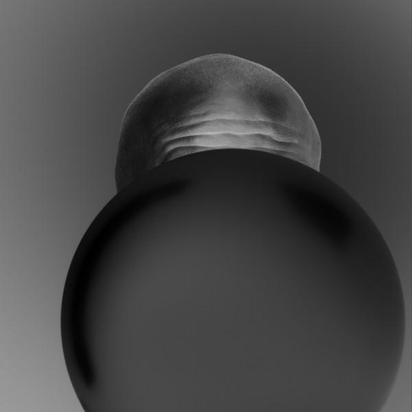 Pavel Mára: Negativní hlava IV, černobílá fotografie, archivní pigmentový tisk na bavlněném papíru Hahnemühle, 1/5 2010, 98 000Kč