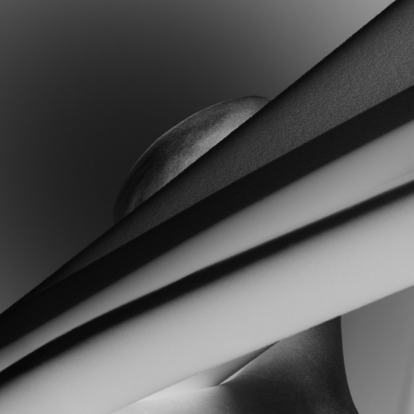 Pavel Mára: Negativní hlava V, černobílá fotografie, archivní pigmentový tisk na bavlněném papíru Hahnemühle, 1/5 2010, 98 000Kč