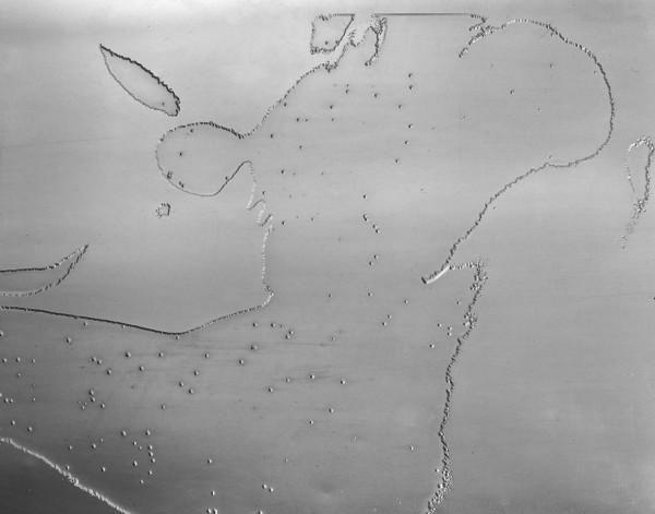 Pavel Mára: Kovové torzo III, fotografie, fotolept  v zinkové desce, 1969/1985, neprodejné